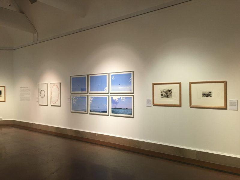 Blue Bird collection Southampton City Art Gallery